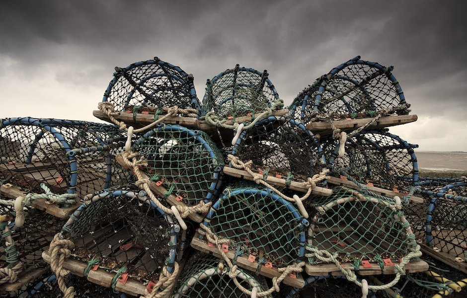 Bridlington Docks - Crab Cages
