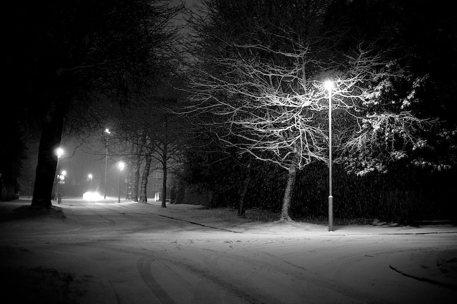 Lampost illuminating trees and road, black and white - Allerton, Liverpool
