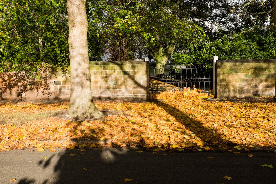 Autumn in Allerton - Gateway