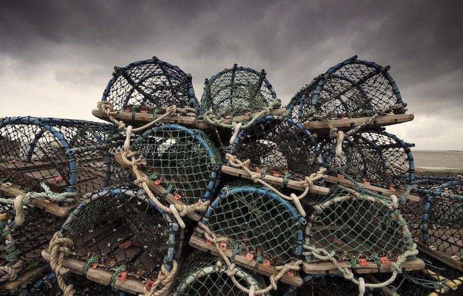 Bridlington Docks - Crab Cages
