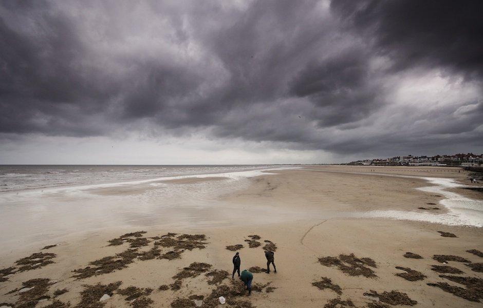 Men digging for bait, Bridlington beach