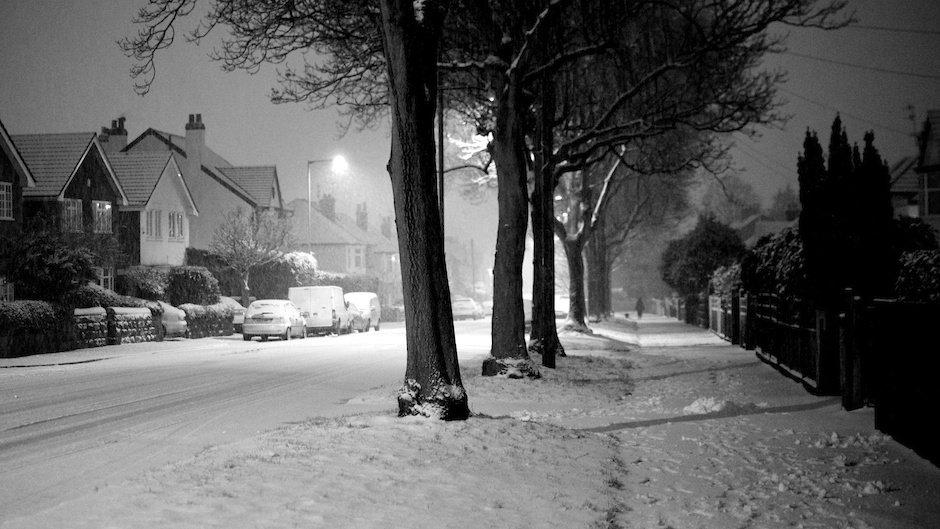 Man walking dog in snow, black and white - Green Lane, Liverpool